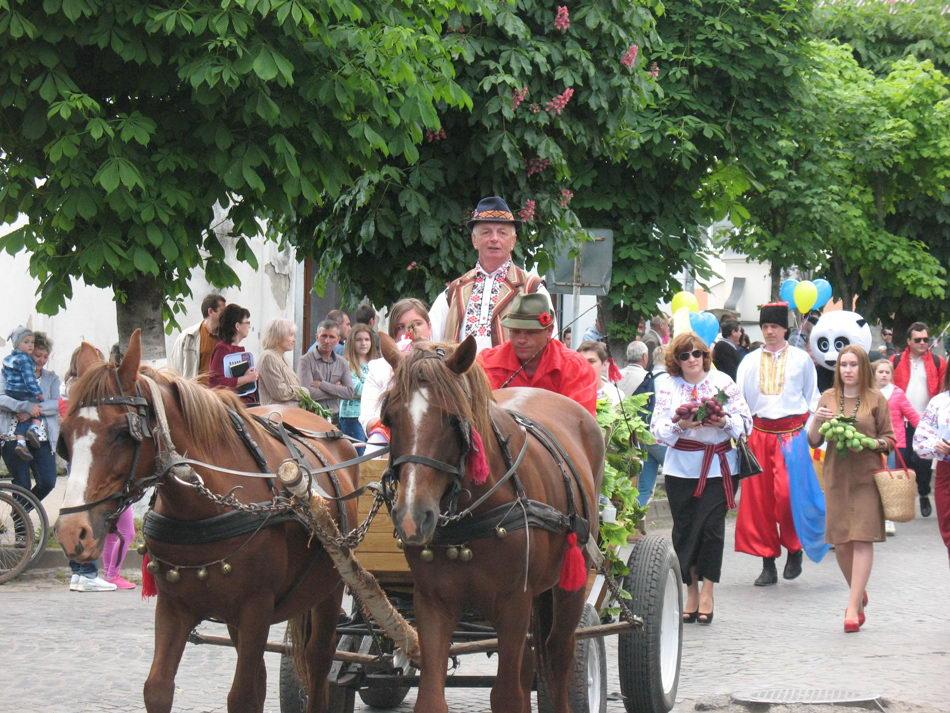 фестиваль-виноградарей-виноделов-2-2016-теплица