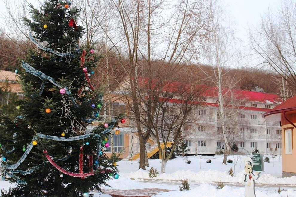Яркие моменты Новогоднего и Рождественского туров